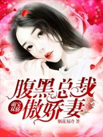 萌宝双骄:腹黑总裁傲娇妻小说全本阅读