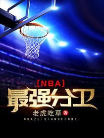 NBA最强分卫小说全本阅读
