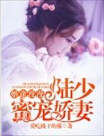 婚途漫漫:陆少蜜宠娇妻小说全本阅读