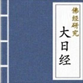 大日经小说全本阅读
