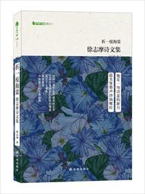 折一枝海棠——徐志摩诗文集小说全本阅读