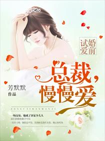 婚前试爱:总裁,慢慢爱小说全本阅读