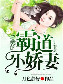 总裁的霸道小娇妻小说全本阅读