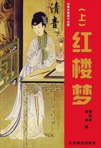 红楼梦(上)小说全本阅读